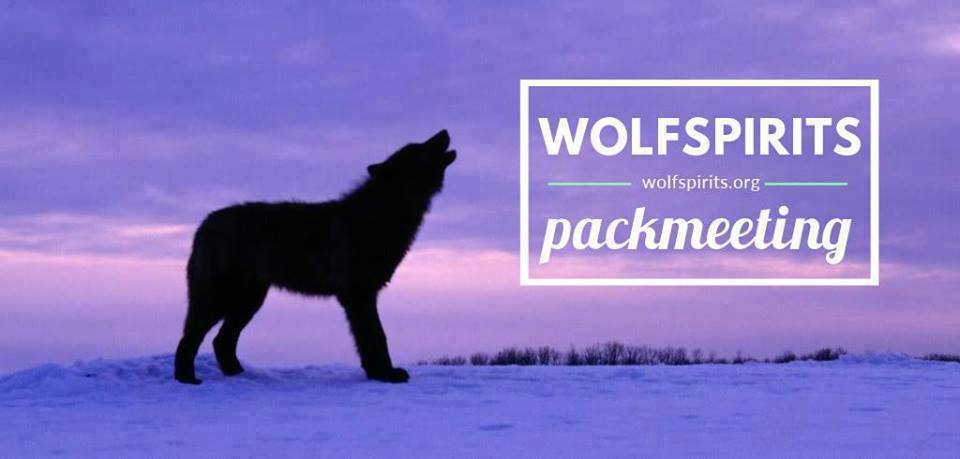 Pack Meeting header