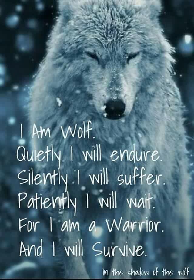 Wolf Quotes Wolfspirits